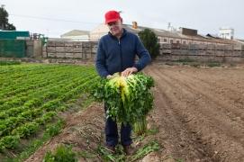 Productor de verduras en Tudela, 2017.